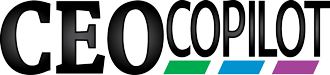 CEO Copilot